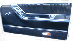 thunderbird door panel